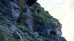 Himalayan tahr nannies under large rock wide then tight