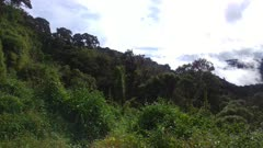 Beautiful lush valley viewed from an elevated corner in a slow pan shot