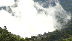 Low level cloud timelapse in Central America's high denivelation terrain