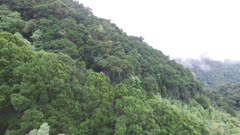 Dramatic mountain side of the Costa Rica cloud forest filmed by drone