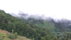 Tropical hill side with very low clouds moving slowly viewed by drone