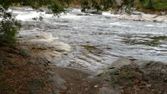 Small oscillating waves on the shore of a white water rapids river
