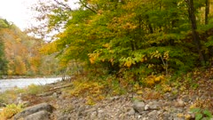Painted nature is the beautiful result of ever changing seasons in Canada