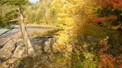 Stunning bright beautiful scene of a mixed forest in fall with all shades of colors