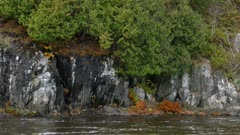Extended pan shot of beautiful river shore made by dramatic natural stone walls