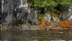 Rocky stone walls are what hold the river water that flows at high current