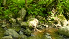 Natural stream water flows against big stone rock pan right