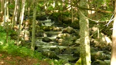 Beautiful natural water stairs lively moving in woods distance view