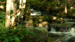 Amazing stepped stream waterfall moss on stones pan right