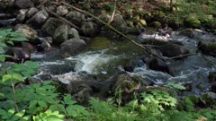 Lively rocky riffle water rumbling towards high angle trucking