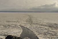 24 hour time lapse looking down over large crack in sea ice with sleeping Weddell seals in Antarctica