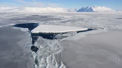 Ice Floe, Ice Berg, Sea Ice, Vista, Emperor Penguin, Ross Sea