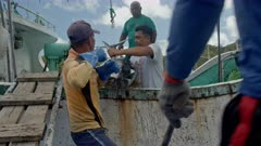 Workers unloading a Bigeye Tuna from a fishing vessel in Palau