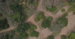 Mana Pools aerial - vertical shot, moving over bush and rotating