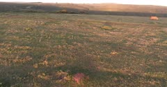 Shamwari Homestead Game Reserve BIG5 Drone Rhinos Giraffe Antelopes