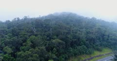 Drone footage of the Bokor National Park near Kampot, Cambodia. The camera is showing the untouched forest covering the hills of the Bokor National Park and is going up over the trees towards a thick fog that is covering the forest and moving fast over it.