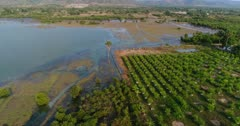 Drone footage of Brateak Krola Lake between Kampot and Kep, Cambodia. The camera is going over fields that are on the shore of the lake and is panning left facing its green water.