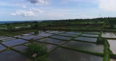 Drone footage of rice fields filled with water close to the sea around the Tukad Petanu river. The camera is starting low over the flooded rice paddies and is ascending showing the whole area with the ocean in the background.