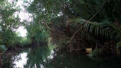 Boat navigating the water between nipa palm trees and mangroves along the Prek Tuek Chhou river north of Kampot.