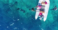 Drone footage of a group of divers floating at the surface next to an inflatable zodiac in front of Wetar island with its luxuriant tropical vegetation and turquoise water. The camera is facing down at birdview angle over the divers and is ascending while tilting up showing the colorful shallow coral reef and the rocky coast of the island.