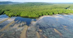 Drone footage of the mangroves and the shallow reef of the north-eastern part of Lembongan island at sunrise. The camera is facing the mangroves and is going sideways along the coast.