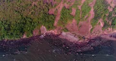 Drone footage of the coastal area in Anjuna, Goa, India, with a few bush trees growing on reddish soil and waves breaking on its rocky beach. The camera is facing down at the beach and is going backward over the water while tilting up.