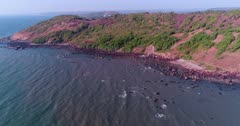 Drone footage of the coastal area in Anjuna, Goa, India, with a few bush trees growing on reddish soil and waves breaking on its rocky beach. The camera is facing the coast and is going towards it.