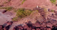 Drone footage of a white shrine with a cross built on top of big stone on the rocky beach of the coastal area in Anjuna, Goa, India. The camera is going along the beach panning at the white monument.