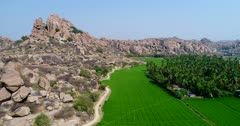 Drone footage of the UNESCO World Heritage temple complex area in Hampi, Karnataka, India, with bright green rice fields and coconut trees at the bottom of rocky hill with granite boulders. The camera is going backward away from the hill over the rice fields while descending.