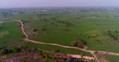 Drone footage of countryside near Mysore, Karnataka, India, with bright green rice fields at various stage growing along the Kaveri river, its other side pretty dry with red earth. The camera is panning the rice fields and then is tilting down after passing the river.