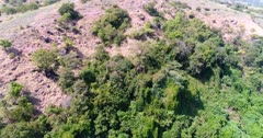 Drone footage of Sangeang island, Indonesia with its volcanic ground scattered with small trees and bushes, an area is covered by plant. The camera is facing the trees and is descending straight.