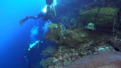 Diving footage of divers swimming along wall, a fish trap made of bamboo is on top of the reef, Alor Island, Indonesia. The camera is going over the reef towards the divers.