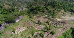 Aerial footage of rice paddies in terraces on hill sides with tropical forest nearby and road passing. The camera is panning along the road.