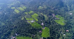 Aerial footage of bright green rice paddies growing in the middle of hills covered in tropical vegetation. The camera is going over the fields.