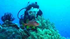 Diver facing a squirrelfish