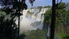 Iguazu Falls lower cataract tree silhouette and rainbow