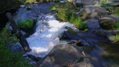 Small waterfall in dappled sun