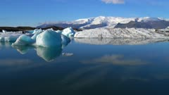 Floating Bergs and distant Glacier