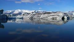 Seal swimming in berg filled lagoon