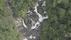 Waterfalls and Streams flowing through Evergreen Forest