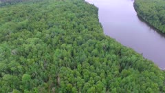 Pan Across Northern Boreal Forest to Small Lake