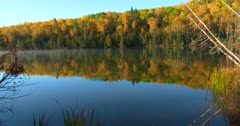 Morning Mist, Fall Colors on Boreal Lake, Birch, Tamarack, Spruce, White Pine