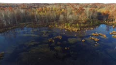Slow Descent into Marsh Wetland, Fall Colors, Oaks, Tamaracks, Pines