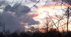 Wind and Clouds, Sunrise in Deciduous Woods