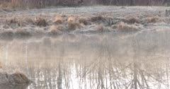 Mist Moving Across Small Pond on Early, Cool Morning