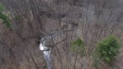Follow Sparkling Creek Through Barron Deciduous Forest, Early Spring Hardwoods
