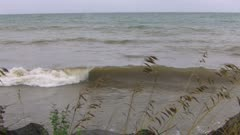 Lake Superior, Waves on Shoreline, Grass Seeds in FG