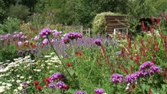Flower garden with wooden shed + pan blooming border with pink, purple and scarlet colors