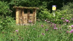 Bee hotel, designed like a bee bus stop behind Greater Knapweed, Centaurea scabiosa, a valuable plant to bees. Officially opened June 2010, Arboretum Belmonte, WAGENINGEN, THE NETHERLANDS