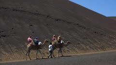 Camel ride in Timanfaya National Park, Lanzarote, Canary Islands, Spain, Atlantic, Europe
